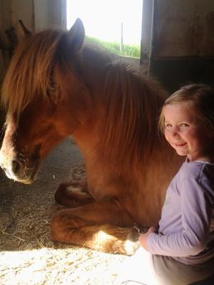 Pferd Glaisir mit Kind